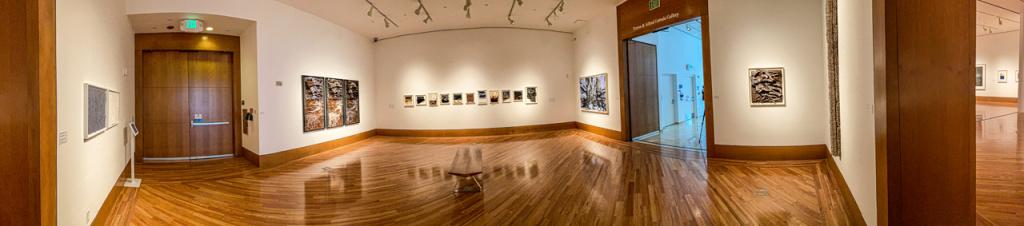 The Patricia & Phillip Frost Art Museum'
